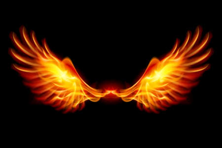 fire symbol: Wings in Flame and Fire. Illustration on black