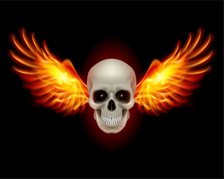 Danger Skull with Fire Wings. Illustration on black Vector