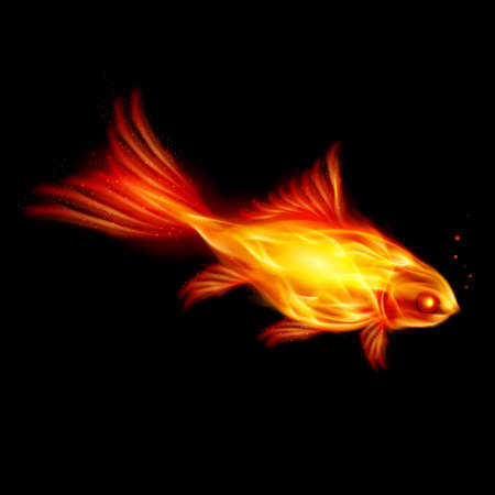 fish fire: Abstract Burning fish, Illustration on black background Illustration