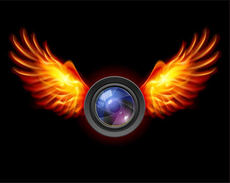 Focus-Fiery wings, a color illustration on a black background Illustration