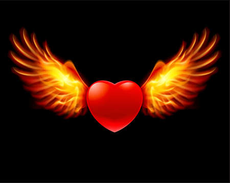 red love heart with flames: Heart in fiery wings, a color illustration on a black background
