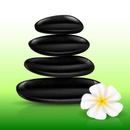 Stones spa with white Flower. Illustration for design Vector