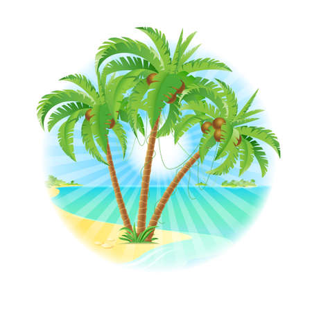 frond: Coconut palm trees on a island with sun. Illustration on white.
