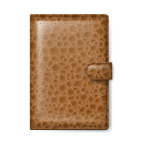 pocketbook: Brown leather wallet  Illustration on white background