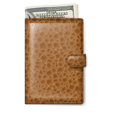 us paper currency: Brown Leather wallet with Dollars  Illustration on white background