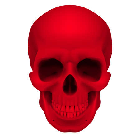 eye sockets: Realistic red skull. Illustration for designer on a white background.