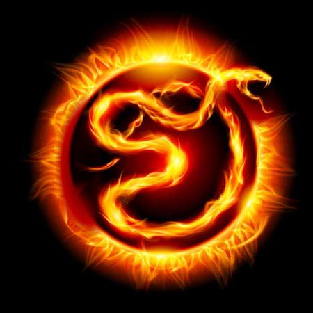 snake year: Tarjeta colorida con la Serpiente de Fuego. Veinte nuevo a�o trece.