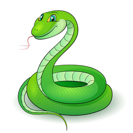 Cartoon Illustration of a nice green snake. Vector