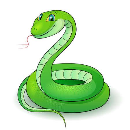 anaconda: Cartoon Illustration of a nice green snake.