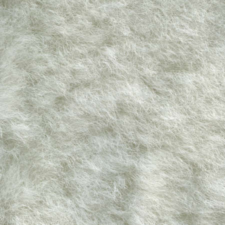 Sheep gray fur.  Background Illustration for design illustration