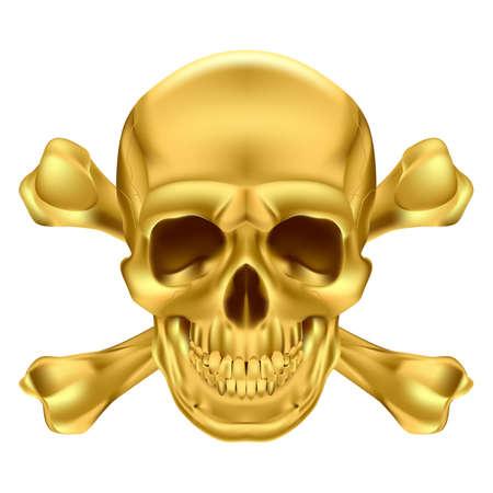 Gold Skull and Crossbones. Illustration on white for creative design Stock Vector - 17872864