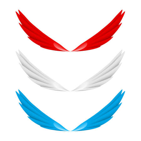 wing span: Abstract colorful wings. Illustration on white bacground