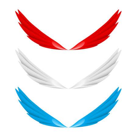 white bacground: Alas abstractas de colores. Ilustraci�n en blanco fundamento