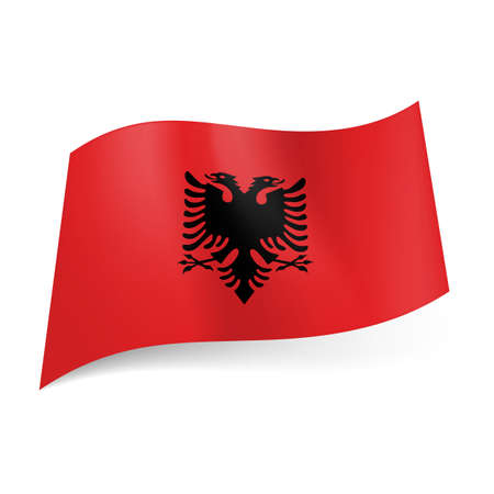 double headed: National flag of Albania: black double-headed eagle on red background.