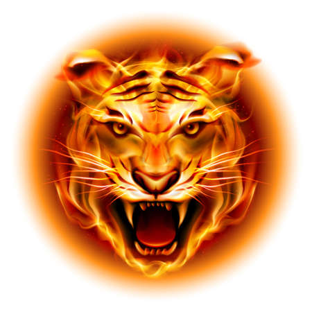 tigre caricatura: Jefe de agresivo tigre de fuego aisladas sobre fondo blanco.