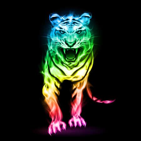 Tigre de Feu dans les couleurs du spectre isolé sur fond noir.