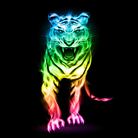 aggresive: Fire tiger in spectrum colors isolated on black background.