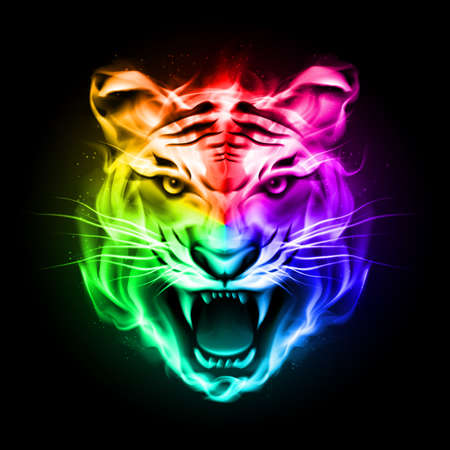 colourful fire: Head of tiger blazing in spectrum fire on black background.