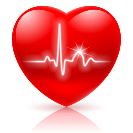 vital: Shiny red heart with cardiogram isolated on white. Illustration