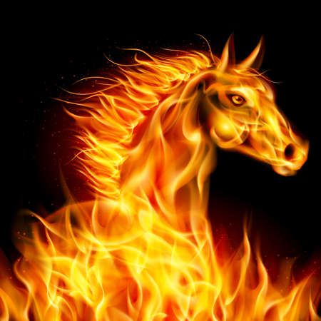 alight: Head of horse in fire on black background.