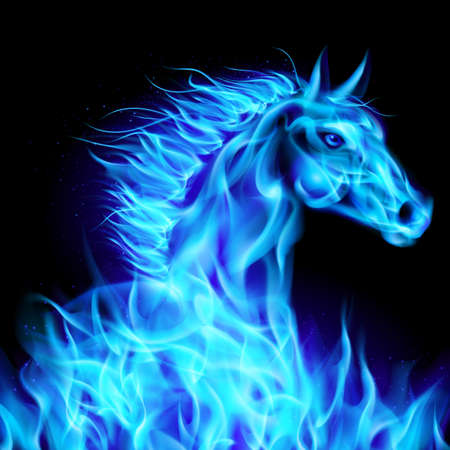 alight: Head of blue fire horse on black background.