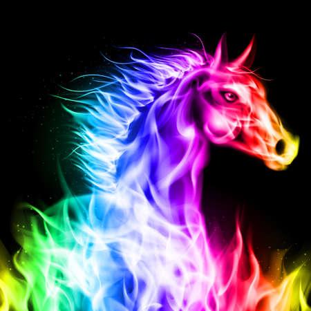 intense: Testa di cavallo fuoco nei colori dello spettro su sfondo nero. Vettoriali
