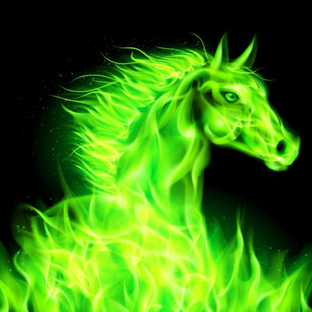 year of horse: Head of green fire horse on black background.