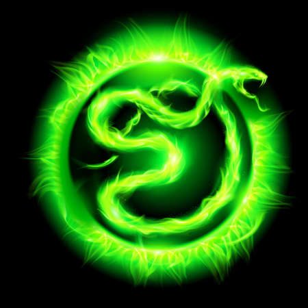 Green fire snake in blazing circle on black background.  Vector