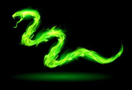 black snake:  Illustration of green fire snake on black background.   Illustration