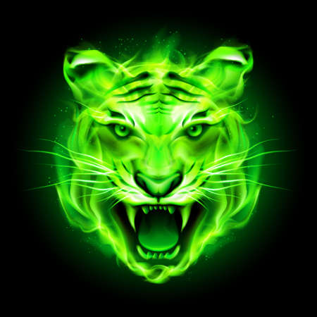 Head of agressive green fire tiger isolated on black background. Illustration