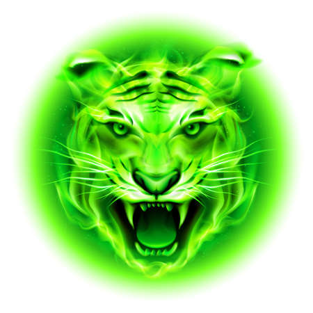 Head of agressive green fire tiger isolated on white background. Çizim