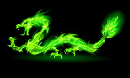 Fire Chinese dragon in green on black background.  Vector