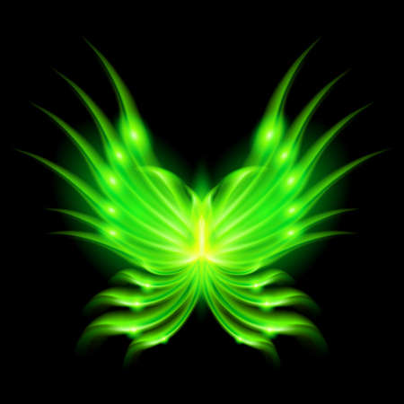 flamy: Illustration of green fire butterfly on black background.
