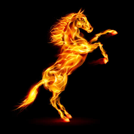alight: Fire horse rearing up. Illustration on black background.