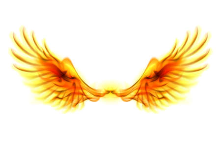 red winged: Illustration of fire wings on white background.  Illustration
