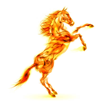 Fire horse rearing up. Illustration on white background. Vector
