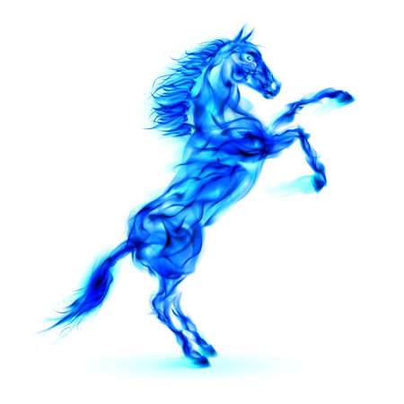 devilish: Blue fire horse rearing up. Illustration on white background.