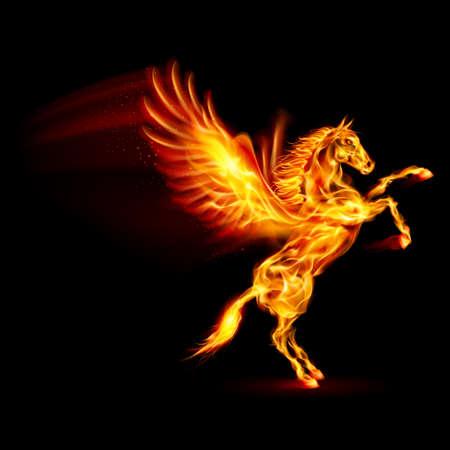 pegaso: Fuego Pegasus encabritado. Ilustración sobre fondo negro