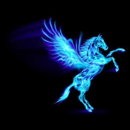 Blauw brand Pegasus fokken. Illustratie op zwarte achtergrond