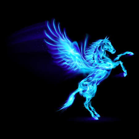 pegaso: Fuego azul Pegasus encabritado. Ilustraci�n sobre fondo negro