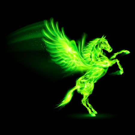 flame wings: Green fire Pegasus rearing up. Illustration on black background