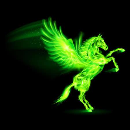 pegaso: Verde fuego Pegasus encabritado. Ilustración sobre fondo negro Vectores