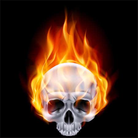 fire skull: Illustration of chrome fiery skull on black background.