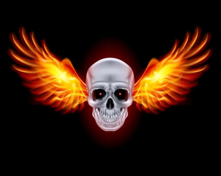 Skull with fire wings on black background. Stock Vector - 24012101