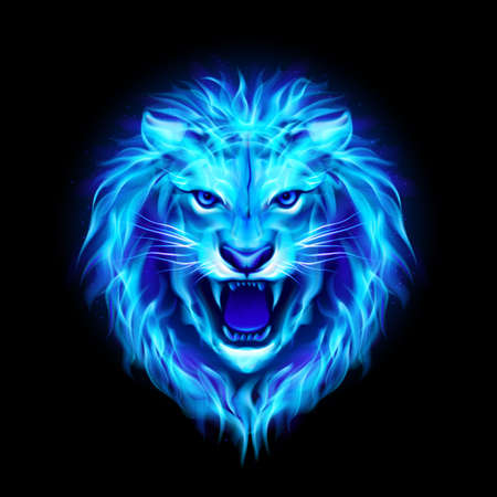Head of aggressive blue fire lion isolated on black . Иллюстрация