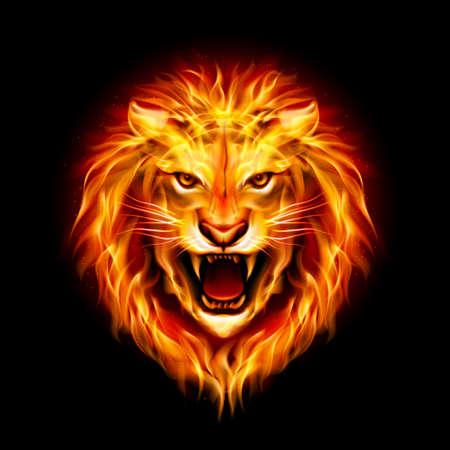 Cabeza de león fuego agresivo aislado sobre fondo negro. Ilustración de vector