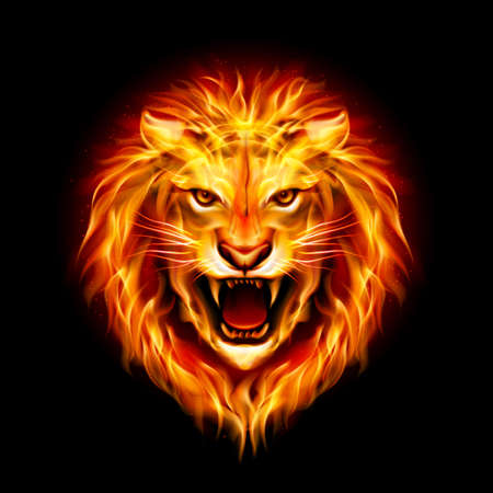 Head of aggressive fire lion isolated on black background. Vettoriali
