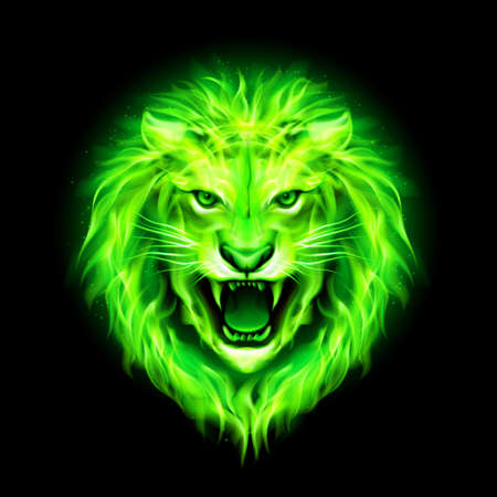 zodiac anger: Head of aggressive green fire lion isolated on black background.