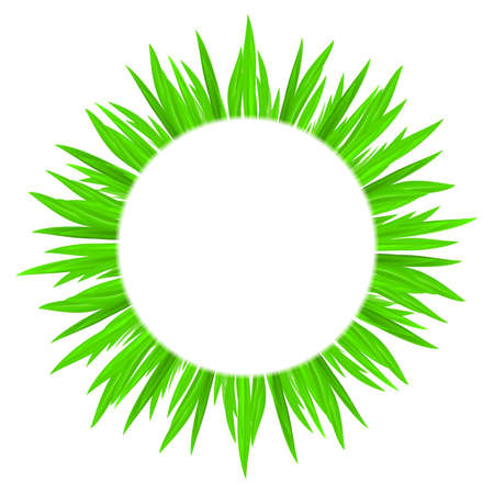 White circle with spring green grass framing. Stock Vector - 24395886
