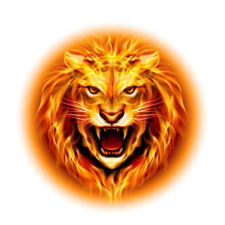Head of aggressive fire lion isolated on white background. Illustration